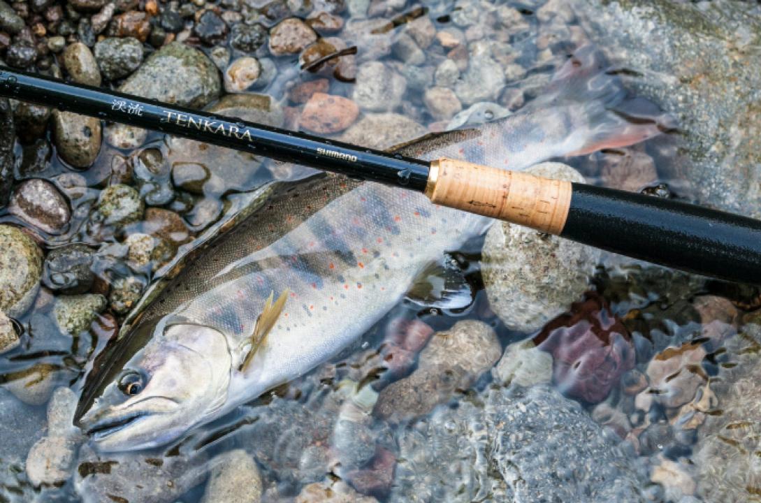 What Is Tenkara Asian Portal Fishing Blog
